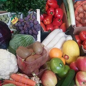 dystrybucja warzyw